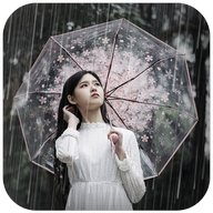 Rain Effect on Photo - Pic Editor and Text