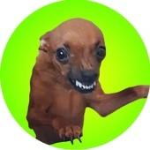 Brasil stickers memes