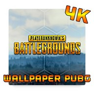 Wallpaper PUBG