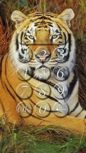 Tiger lock screen.