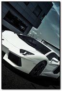 White Aventador