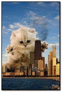Fantasy kitty & city