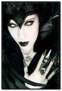 dark crow...