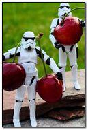 Cherry Bot