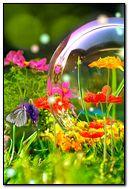 Musim semi