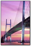 Yokohama-Bay-Bridge-Japan
