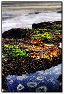 Pebbles-Beach