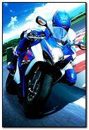 RIder Moto GP