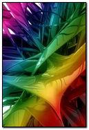 Rainbow Synthetics