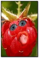 Bezczelna Berry