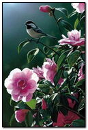 Flowers & Bird By Terry Isaac