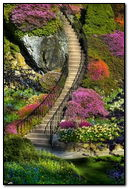 Kroki ogrodowe