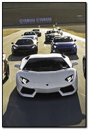 The Sport Cars