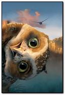 Legend Guardians Owl