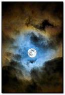 Blue-moonlight
