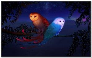 Owls In Fantasy Art
