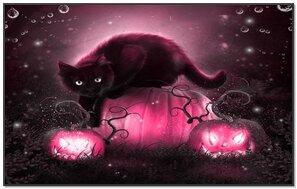 Kitty dark wallpaper hello hello. Wallpaper