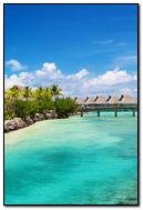 Tropical Ocean Sea