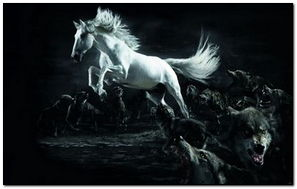 Horse And Wolves