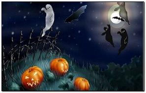 Sppky Night Hallowen