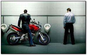 Funny Bike Lover At Toilet