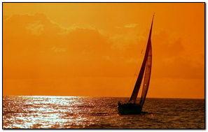 Buổi tối đại dương