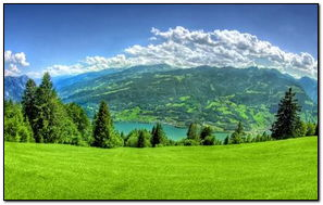 Spring- Green Grass & Mountain