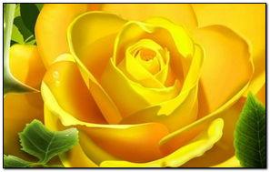 3D желтая роза