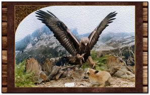 Eagle S Fox