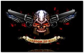 SKULL dan GUNS