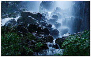 Beautiful Forest Waterfall Summer