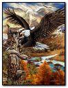 Eagle-207661