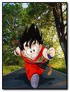 Goku on Road