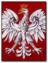 polish ensign 2