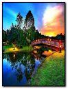 Beautiful Park Bridge