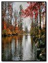 Piney River Autumn