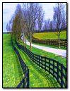 Fence Path