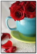Red Roses In Cup