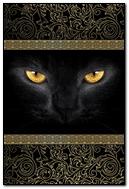 Black Cat. Gold Eyes. 640х960