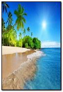 Sunshine Beach Coast