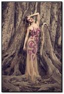 Beauty In Wood