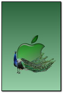 Apple And Peacock