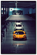 Sport Cars Line Up