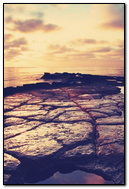 Retro Sea
