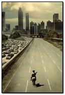Walking Dead City