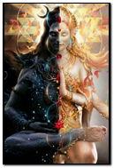 Half Shiva