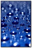 Shiny Drops