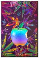 Apple Dew & Weed