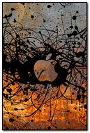 Rust & Ink