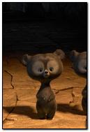 Bears Cartoon Beautiful 83453 720x1280